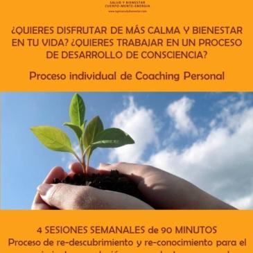 Proceso individual Coaching Personal
