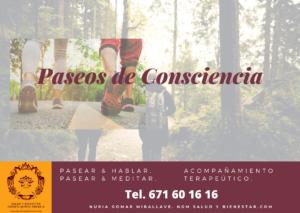 Paseos de Consciencia. Nuria Gomar Mirallave. NGM Salud y Bienestar.